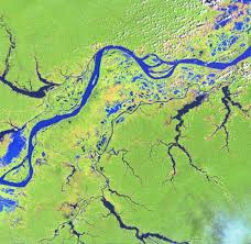 Map Of The Amazon River Amazon River Flowed Backwards In Ancient Times
