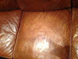 Repair Scratches On Leather Sofa Repair Scratched Leather Sofa Thecreativescientist