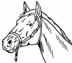 coloriage cheval les beaux dessins de animaux à imprimer et