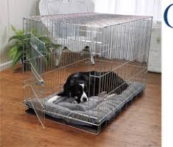 Tough Dog Bed Dog Beds Dog Cage Crate And Kennel Pad Selection Guide