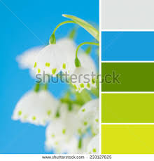 matching color schemes green blue color scheme white green stock photo 233127625 shutterstock