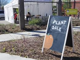 Urban Garden Denver - 8 reasons why denver is set to become a major sharing city shareable