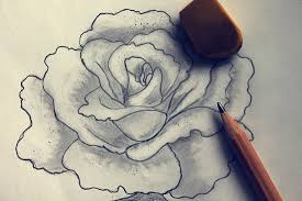 photos beautiful flowers pencil sketches drawing art gallery