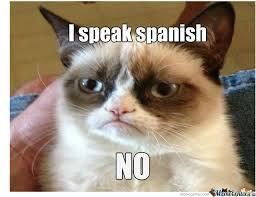 Speak Spanish Meme - i speak spanish by lolabunny413 meme center