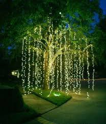 string lights on a tree would be using the light curtain