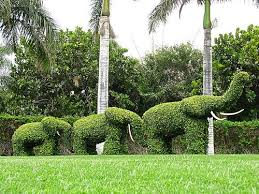 Grass Roots Landscaping by Useful Tax Tips For Your Landscaping Business Grass Roots Biology