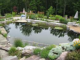 Backyard Swimming Ponds by 67 Cool Backyard Pond Design Ideas Digsdigs