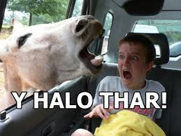 Funny Hello Meme - it says y halo thar and it should say why hello there the