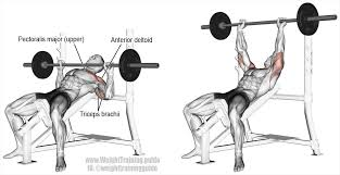 Home Bench Press Workout Incline Barbell Bench Press Main Muscles Worked Clavicular