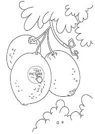 lemons on bunch fruit coloring page for kids fruits coloring