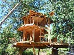 Treehouse Camping Quebec - sunray kelley u0027s new treehouse the shelter blog