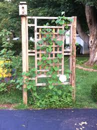 garden trellis screen