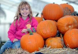 Fun Things To Do On Halloween Night Farm Shop Animals U0026 Seasonal Events Gloucester Over Farm Market
