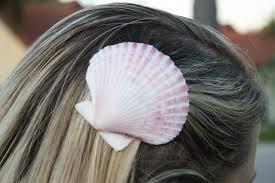 hair barrette sky designs shell hair barrettes