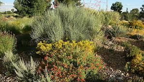 Mountain Landscaping Ideas Mountain Gardening Perfect Mountain Region Plant Combos