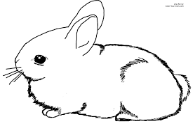 easter bunny clipart free draw to color