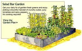 layout kitchen garden planning a vegetable garden layout a glorious kitchen garden plan