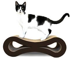 Cardboard Scratchers For Cats Amazon Com Figure 8 Cat Scratcher Plum Red Scratching Pads