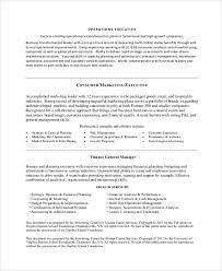 Example Objective Statement For Resume by Sample Job Objective Statement 7 Documents In Pdf Word
