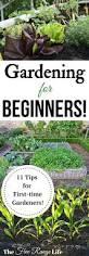 11 tips for a successful first garden gardens vegetable garden