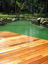 Landscaping Around Pools by Yes Landscaping Custom Pool Designs And Landscaping Gold Coast