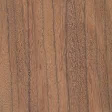 sand pine endgrain 10x wood grain pine sands