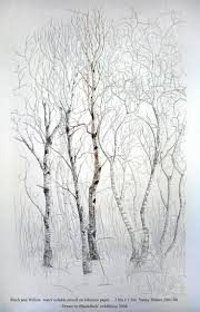 Wall Mural White Birch Trees Best 25 Birch Tree Tattoos Ideas On Pinterest Tree Art Birch