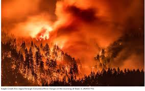 Wild Fire Columbia Gorge by Columbia River Gorge Sept 5th 2017 Hans Howe