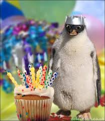 Birthday Animal Meme - 10 funny birthday images