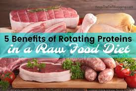 5 benefits of rotating proteins in a raw food diet for dogs keep