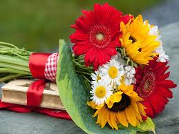 sunflower ribbon flowers bouquet books white sunflower ribbon summer