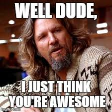 You Are Awesome Meme - confused lebowski meme imgflip