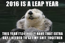 Otter Meme - happy new year from optimistic otter meme guy