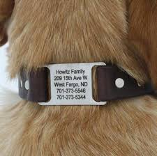 waterproof personalized collars soft grip collars leads