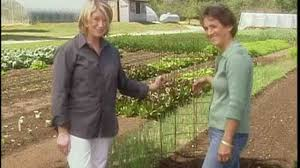 video how to make the perfect tomato cage martha stewart