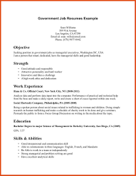 Detailed Resume Sample by Detailed Resume Free Resume Example And Writing Download