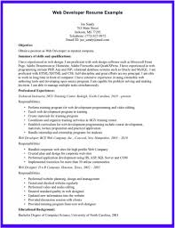 Sample Resume For Web Designer Fresher by Salesforce Developer Resume Free Resume Example And Writing Download