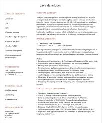 Software Developer Resume Examples by Stunning Ideas It Resume Samples 14 Information Technology It