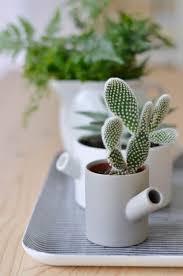 118 best un coin de verdure images on pinterest plants