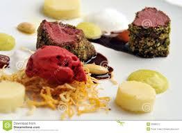 haute cuisine haute cuisine roast beef with potato stock photo image of duck