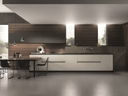 linear kitchen domina linear kitchen by aster cucine s p a design lorenzo