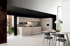 light oak kitchen cabinets modern cesar ariel light oak kitchen cesar nyc kitchens oak