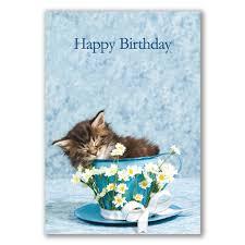 female birthday cards judge sampson