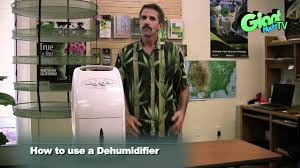 how to use a dehumidifier in your indoor grow room youtube