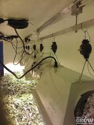 Grow Room Lights Grow Light Rails Increase Your Yield
