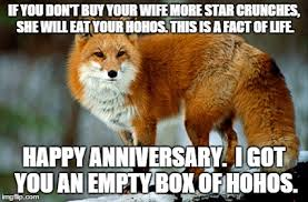 Fox Meme - garrulous fox memes imgflip
