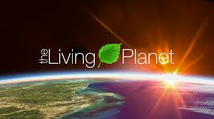 the changing colors of our living planet nasa