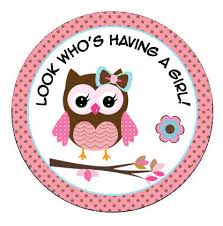 owl baby shower outstanding owl baby shower decorations girl 12 for best baby