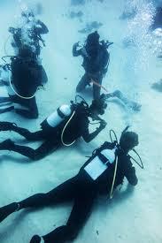 padi open water exam bliblinews com