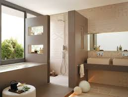 Spa Like Bathroom Designs Spa Bathrooms Ideas Complete Ideas Exle